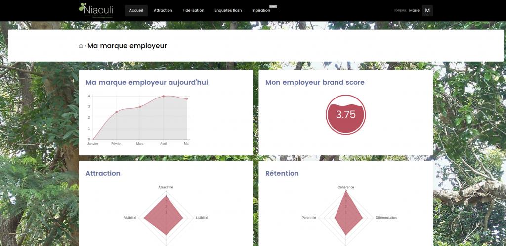 tableau de bord niaouli pour évaluer sa marque employeur